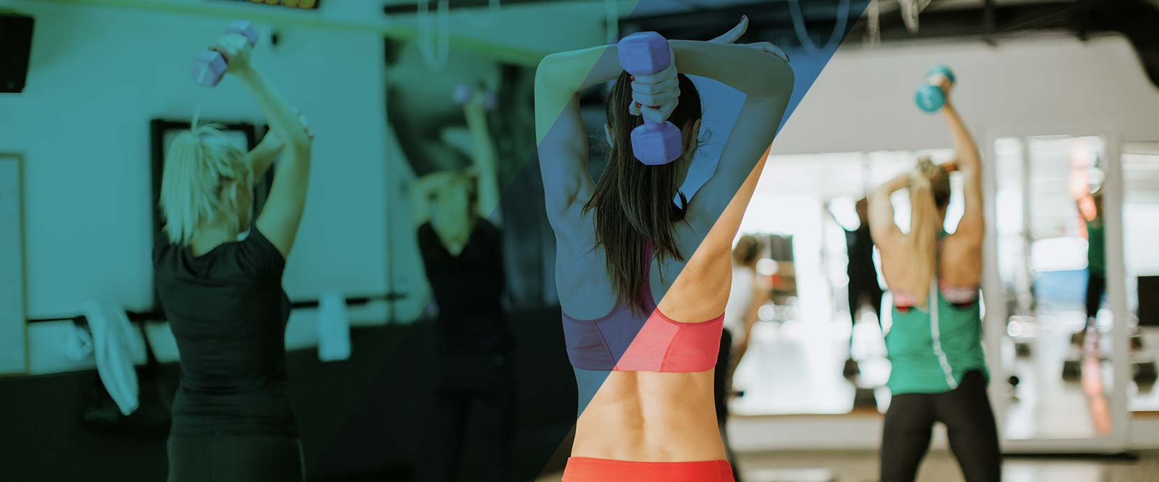 The platform that will help you grow your fitness center